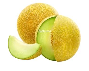 fruit Melon Souihla Local