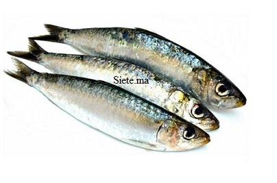 Poisson sardines completes
